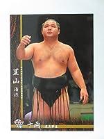 BBM2016大相撲カード■レギュラーカード■No.53里山 浩作/十両