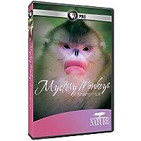 Nature: Mystery Monkeys of Shangri-La [DVD] [Import]