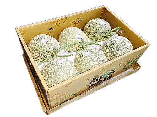 熊本県産 アールスメロン  (2Lサイズ 6玉入り)