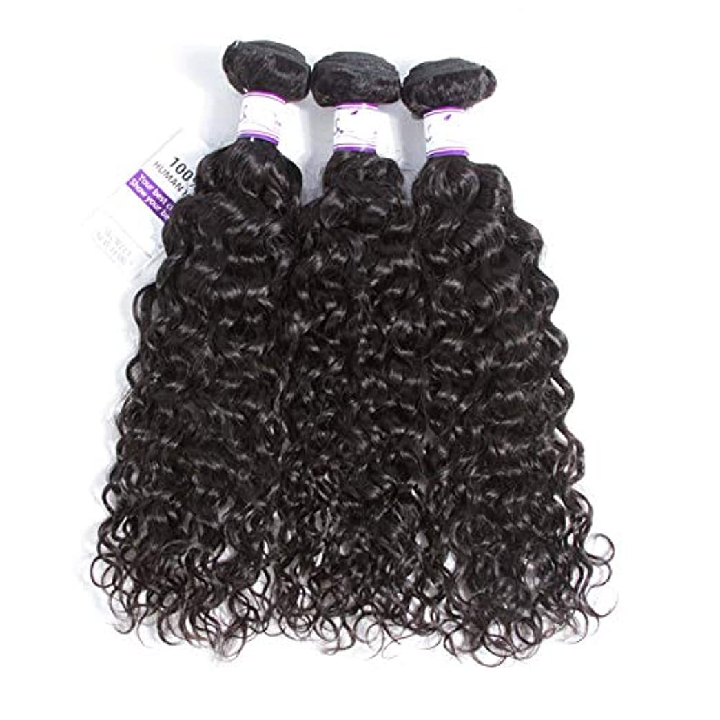 奨励します潜水艦精査するマレーシア水波毛束8-28インチ100%人毛織りレミー髪ナチュラルカラー3ピース髪織り かつら (Stretched Length : 10 10 12)