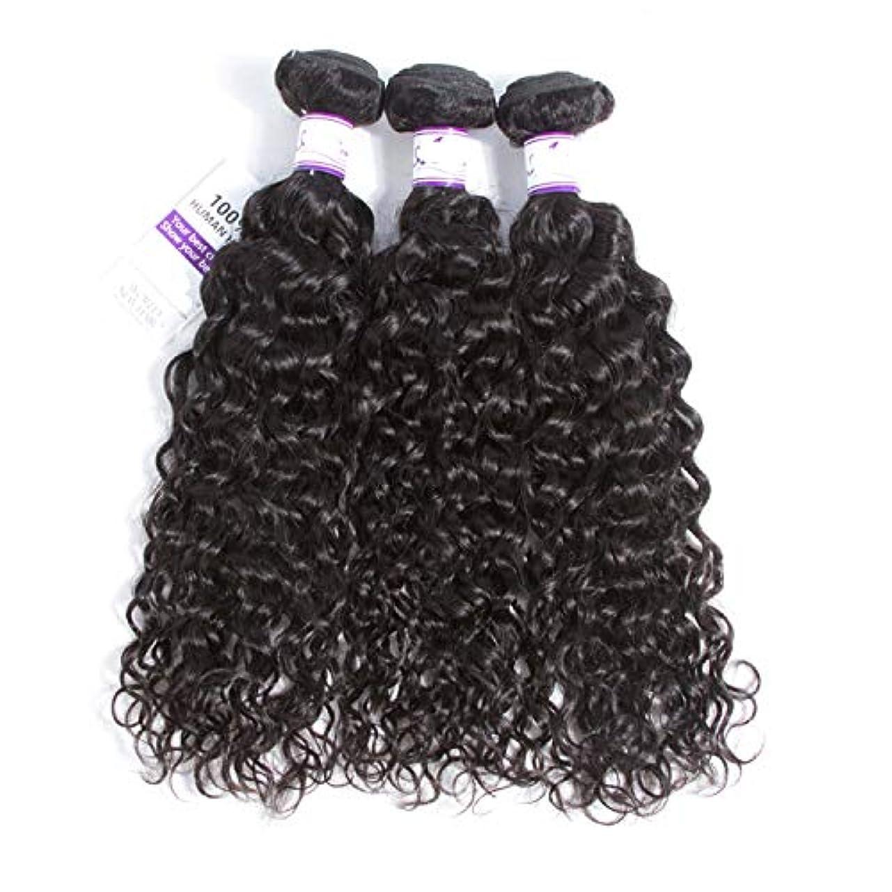 異邦人試用和らげるかつら マレーシア水波毛束8-28インチ100%人毛織りレミー髪ナチュラルカラー3ピース髪織り (Stretched Length : 20 20 22)