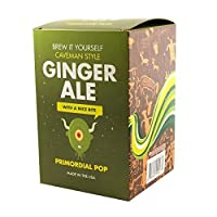 Copernicus–Brew it Yourself–Gingerale