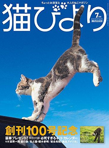 猫びより 2018年 07 月号