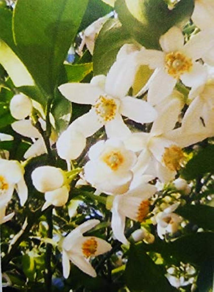 メガロポリス連続した木アロマオイル ネロリ 5ml エッセンシャルオイル 100%天然成分