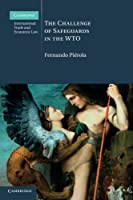 The Challenge of Safeguards in the WTO (Cambridge International Trade and Economic Law)