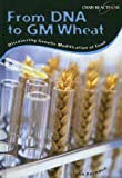 From DNA to Gm Wheat: Discovering Genetically Modified Food (Chain Reactions)