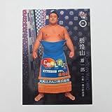BBM2016大相撲カード「彩」■レギュラーカード■No.10/小結/栃煌山雄一郎