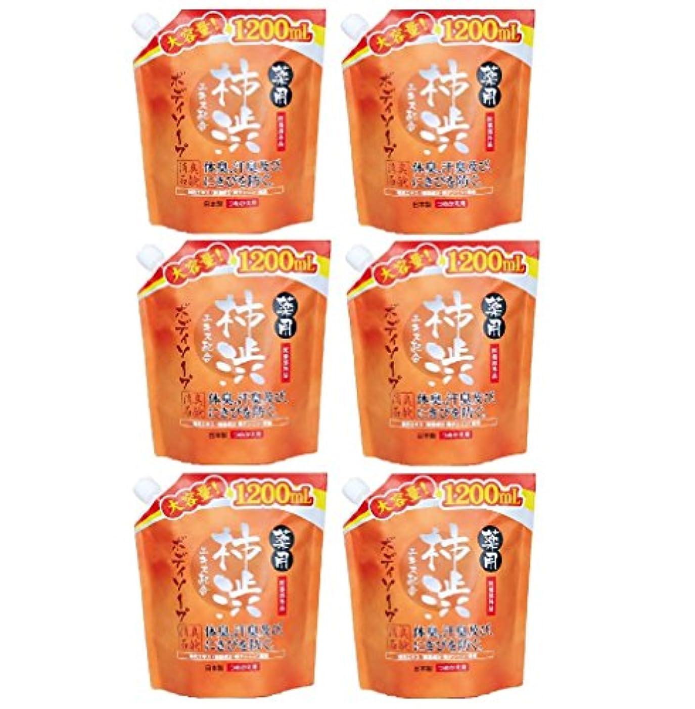 【まとめ買い】薬用柿渋 ボディソープ 大容量 (つめかえ用) 1200mL 【医薬部外品】×6個