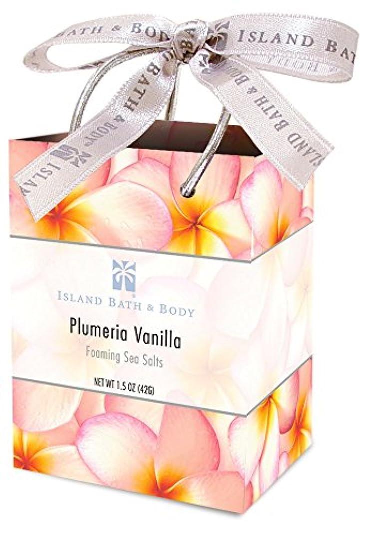 交渉する野心周囲ミネラルソルト/Plumeria Vanilla