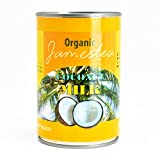 有機ココナッツミルク 400ml |ナチュラル 無添加 オーガニック ヴィーガン グルテンフリー 手作りココナッツミルクヨーグルト