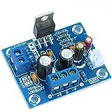 Baoblaze 20W LM1875T モノラル チャンネル ステレオ オーディオ ハイファイ アンプ ボード モジュール DIYキット 高品質 耐久性