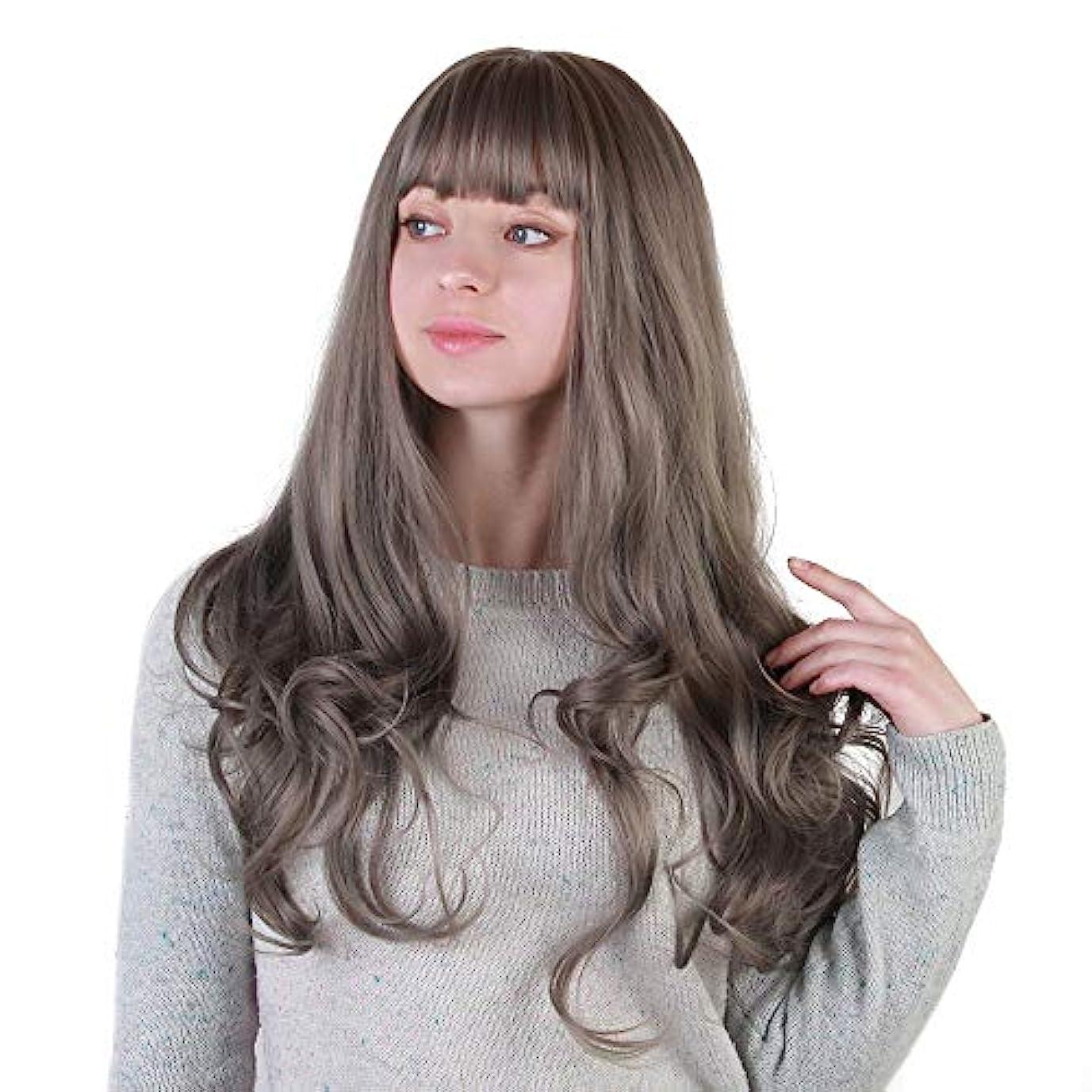 スラッシュ囲まれたひねくれたヘアピース ヨーロッパとアメリカの女性用ウィッグ、灰色の大きな波状の長い巻き毛、化学繊維ウィッグ