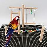 Bird Toys – Parrot Toys - Bird Playground - Wood Perch – Bird Gym- Bird Ladder – Bird Swing – Parrot Cage Toys – Bird Toys Se