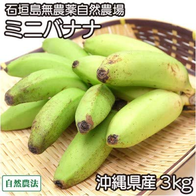ミニバナナ 3kg 自然農法 (沖縄県 石垣島無農薬自然農場) 産地直送 ふるさと21