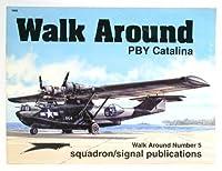 Walk Around Pby Catalina