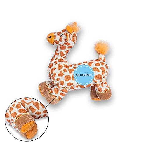 ProGoleem『ペット用おもちゃ音の出るおもちゃ』