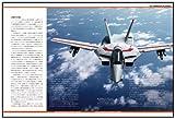 ヴァリアブルファイター・マスターファイル SDF-1マクロス VF-1航空隊 (マスターファイルシリーズ) 画像