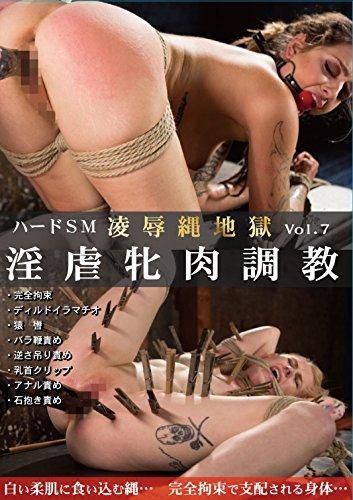 ハードSM 凌辱縄地獄 Vol.07 淫虐牝肉調教 PAINBLOOD/妄想族 [DVD]