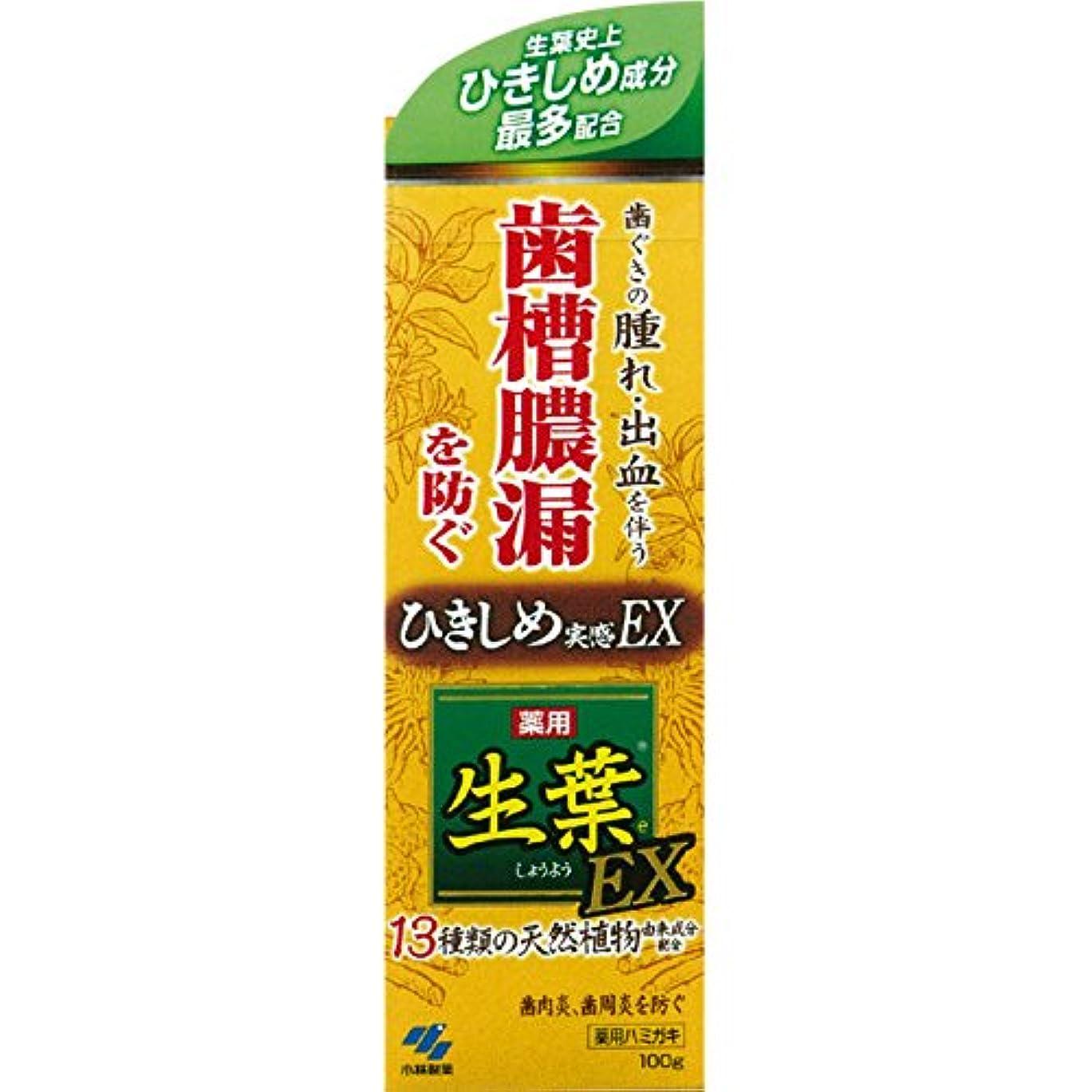 生葉EX 100g x6個セット