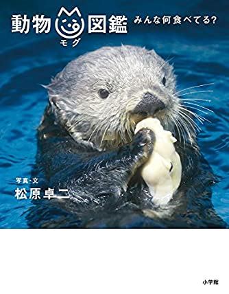 動物mg図鑑: みんな何食べてる?