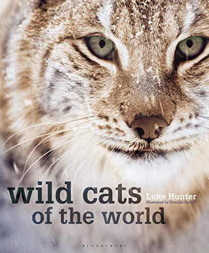 [画像:Wild Cats of the World]