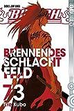 Bleach 73: Brennendes Schlachtfeld