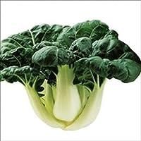 【メール便配送】国華園 野菜たね チンゲンサイ F1ロンフー 1袋(3ml入)【※発送が国華園からの場合のみ正規品です】