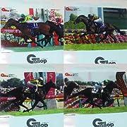 週刊gallopプレゼント!JRA G1ホースクリアファイル 4枚セット サトノダイヤモンド・キタサンブラック・ソウルスターリング・レイデオロです。