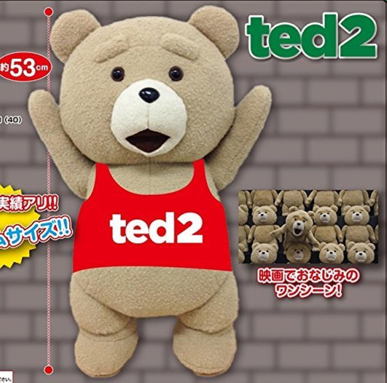 ted2 バンザイぬいぐるみ XL プレミアム 53cmのBIGサイズ