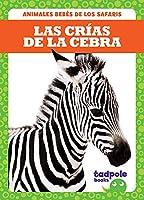 Las crías de la cebra / Zebra Foals (Animales Bebés De Los Safaris Safari Babies)