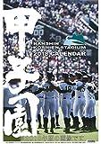 阪神コンテンツリンク 甲子園球場 2019年 カレンダー CL-561 壁掛け A2