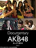 Documentary of AKB48 A to Z 2014 Part2