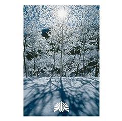 東京事変「空が鳴っている」のジャケット画像