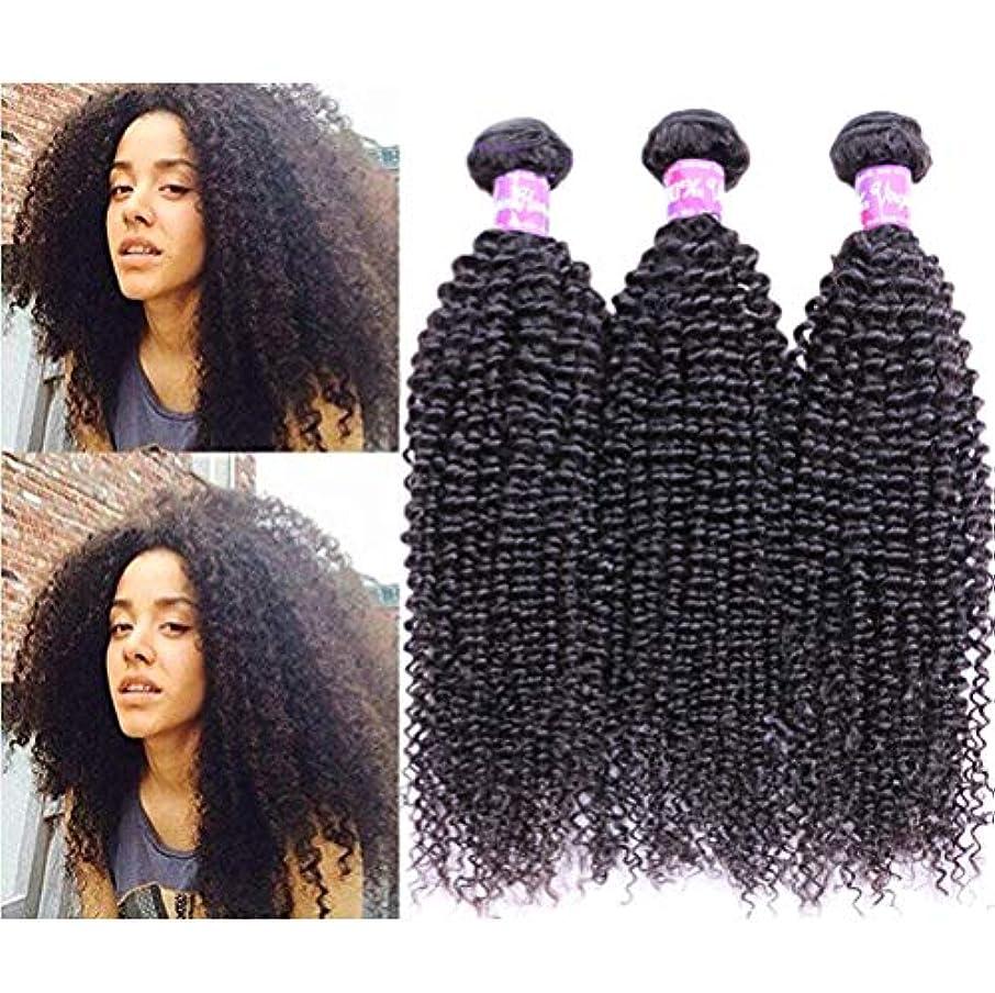 予想外飲み込むまろやかな女性の髪織り未処理のブラジルの深い巻き毛の束本物の人間の髪の束バージンブラジルの髪の束