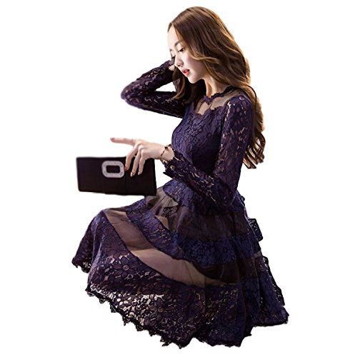 (チョロモ) Cholmo レディース ワンピース ドレス ミニ 長袖 刺繍 レース Aライン シースルー (L, 深紫)