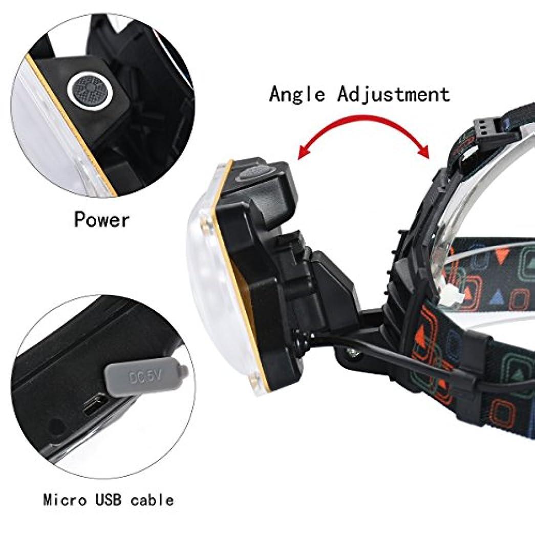 見習い傾向フロント発信スタイルの楽しみ10000LM 2x XM-L T6 LED充電式18650ヘッドランプヘッドライトトーチ