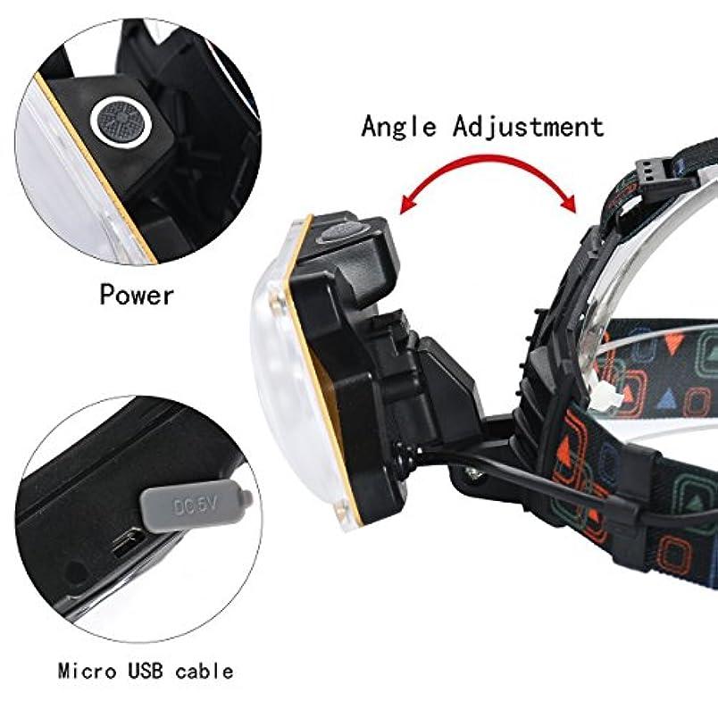 補正神経衰弱リンス発信スタイルの楽しみ10000LM 2x XM-L T6 LED充電式18650ヘッドランプヘッドライトトーチ