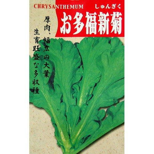 春菊 種 お多福新菊 小袋(約25ml)