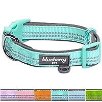 Blueberry Pet(ブルーベリーペット) パステルカラー首輪 ミントブルー 1.5cm (小型犬)