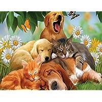 Fineser ( TM )ホームインテリアDIY 5d Cat & Dog Paintingクロスステッチダイヤモンドラインストーン貼り付けた刺繍