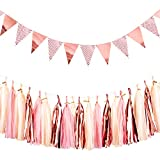 Whaline Sparkly Paper Pennant Triangle Banner Flag Bunting 12 Pcs and Tissue Paper Tassels Garland 15 Pcs for Baby Shower Wedding Birthday Party Wall Decoration, Rose Gold