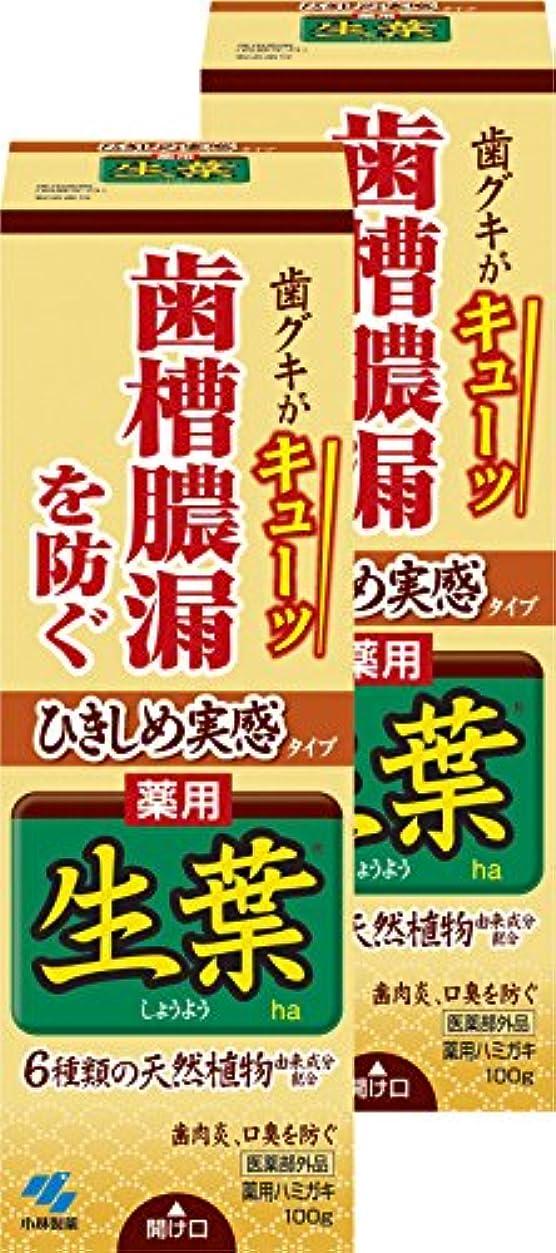 【まとめ買い】ひきしめ生葉(しょうよう) 歯槽膿漏を防ぐ 薬用ハミガキ ハーブミント味 100g×2個 【医薬部外品】