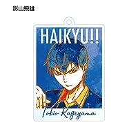 【影山飛雄】 ハイキュー!! トレーディングAni-Artアクリルキーホルダー Vol.2