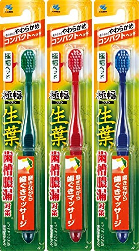 緩むエクステント汚染された【まとめ買い】生葉(しょうよう)極幅ブラシ 歯ブラシ コンパクトヘッド やわらかめ×3個