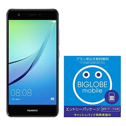 Huawei 5.0型 nova SIMフリースマートフォン チタニウムグレー 日本正規代理店品 NOVA/TITANIUM GRBIGLOBE SIM エントリーパッケージ ドコモ対応SIMカード データ通信/音声通話 (ナノ/マイクロ/標準SIM)[iPhone/Android] 最大 20,000円キャッシュバック EP-1