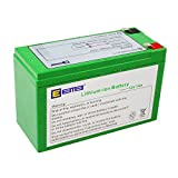 EEMB SLF series 12Vバッテリー 電池交換 UPS電源 リチウム電池 (12V7AH, 700 グラム)