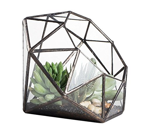 DingDong 八面体ダイヤモンド形状幾何学ガラステラリウム箱多肉植物ポット空気植物プランターバルコニーテラリウム多肉植物花瓶