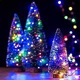 イルミネーションライト 電池式 神戸ルミナリエ 飾り ジュエリーライト 8パターン 点滅 点灯 タイマー機能 防水 防塵仕様 ストリングライト 10メートル 100 LED電球 電池式 LED ライト リモコン付き 屋外 室内 ガーデンライト 正月 クリスマス 飾り 誕生日 電飾 (レインボー)