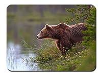 ヒグマ、水、湖畔、草 パターンカスタムの マウスパッド 動物 (26cmx21cm)