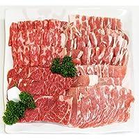 【肉のひぐち】飛騨牛&国産豚肉入バーベキューセット1kg【4~5人】冷凍